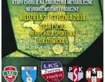 """Więcej o Turniej Żwirex Cup 2018 """"Gramy dla Bartka"""""""